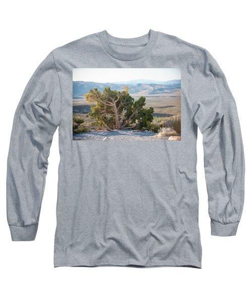Mesquite In Nevada Desert Long Sleeve T-Shirt