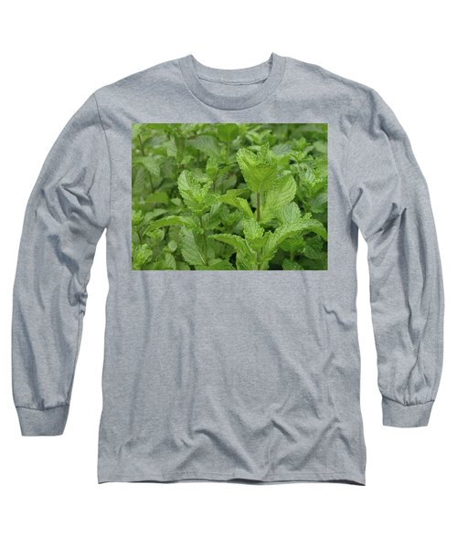 Minty Fresh Long Sleeve T-Shirt