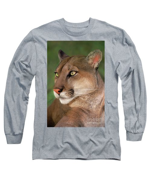 Long Sleeve T-Shirt featuring the photograph Mountain Lion Portrait Wildlife Rescue by Dave Welling