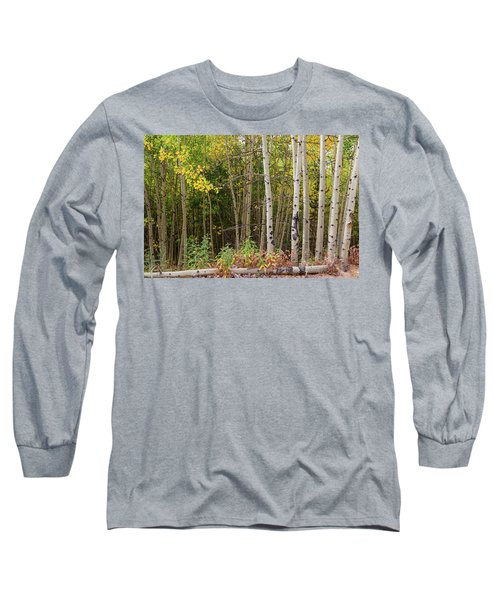 Long Sleeve T-Shirt featuring the photograph Nature Fallen by James BO Insogna