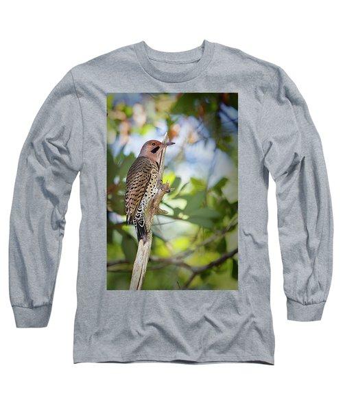 Northern Flicker Long Sleeve T-Shirt