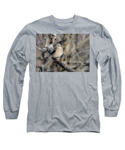 Northern Shrike Long Sleeve T-Shirt