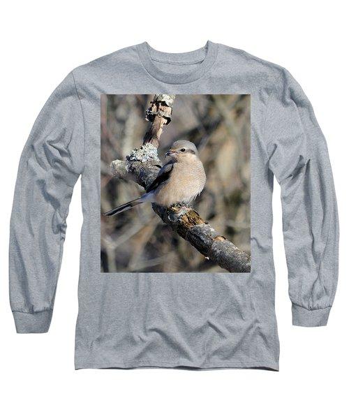 Northern Shrike Long Sleeve T-Shirt