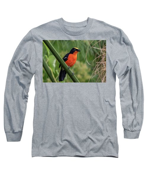 Papyrus Gonolek Long Sleeve T-Shirt