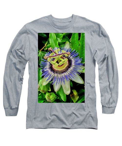 Passion Flower Bee Delight Long Sleeve T-Shirt
