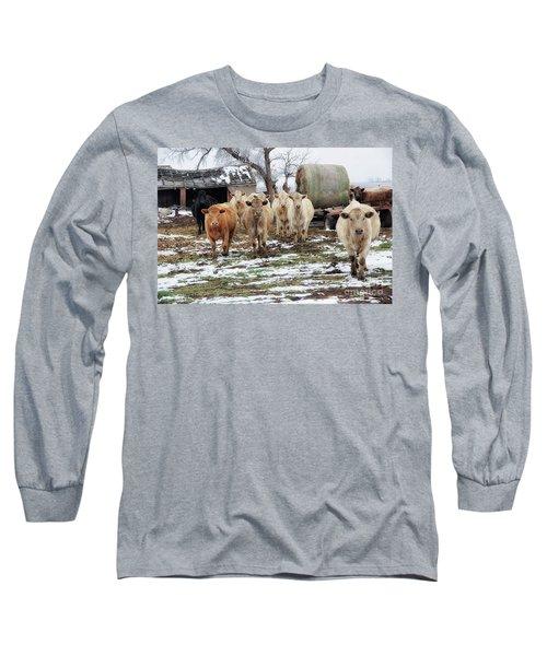 Paterfamilias Long Sleeve T-Shirt