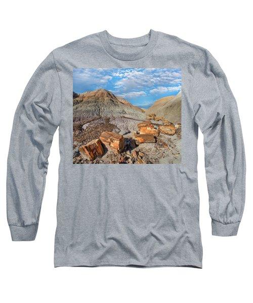Petrified Logs, Blue Mesa, Petrified Long Sleeve T-Shirt