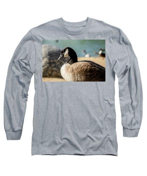 Picturesque Long Sleeve T-Shirt
