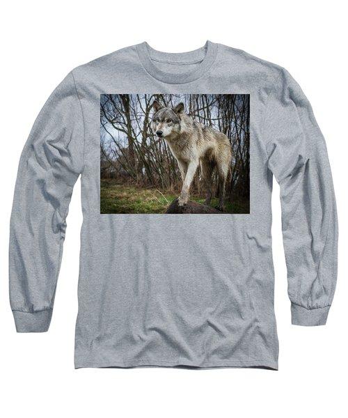 Posing Long Sleeve T-Shirt