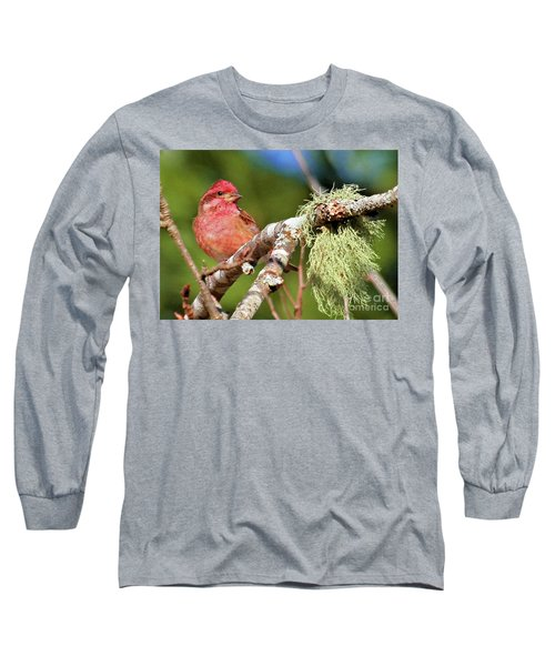 Purple Finch Long Sleeve T-Shirt