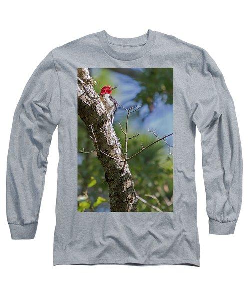 Redhead Woodpecker Long Sleeve T-Shirt