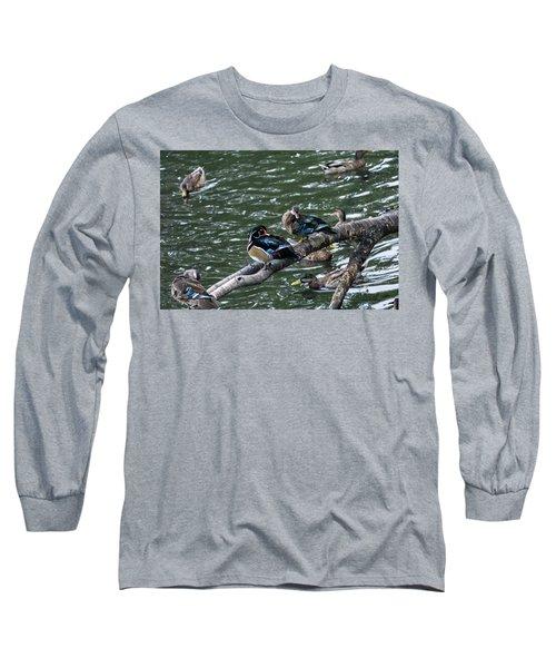 Resting Ducks Long Sleeve T-Shirt