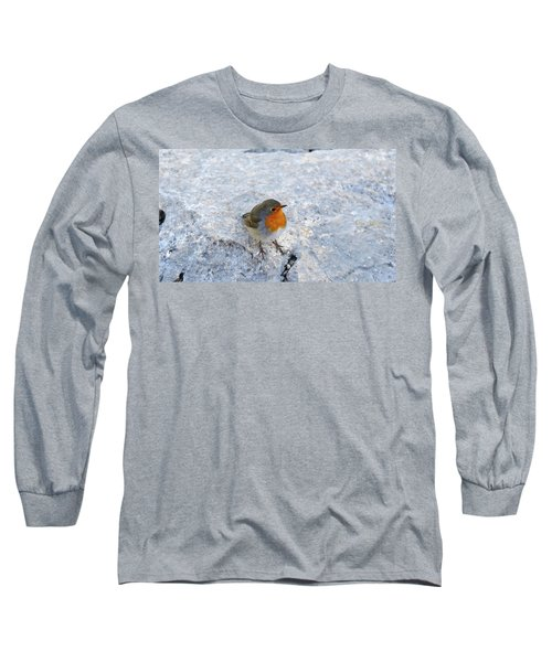 Long Sleeve T-Shirt featuring the photograph Robin On Rock by August Timmermans