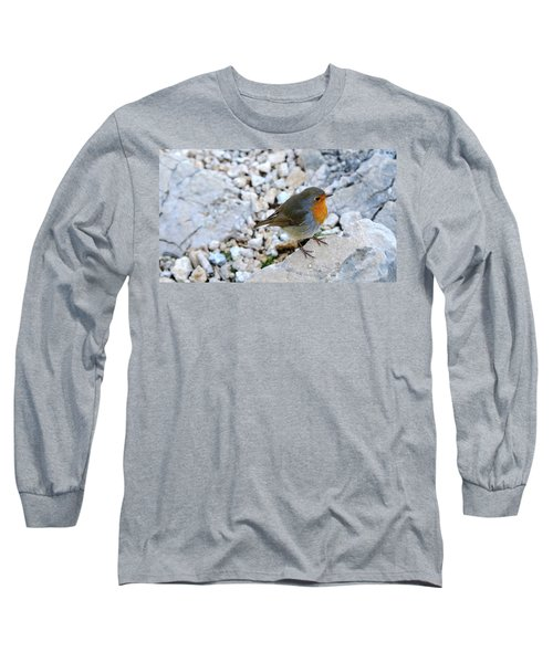 Long Sleeve T-Shirt featuring the photograph Robin Visit by August Timmermans