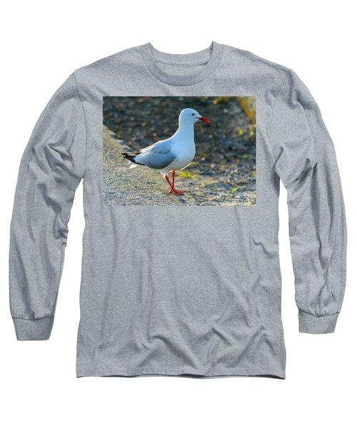 Seagull On The Breakwall Long Sleeve T-Shirt