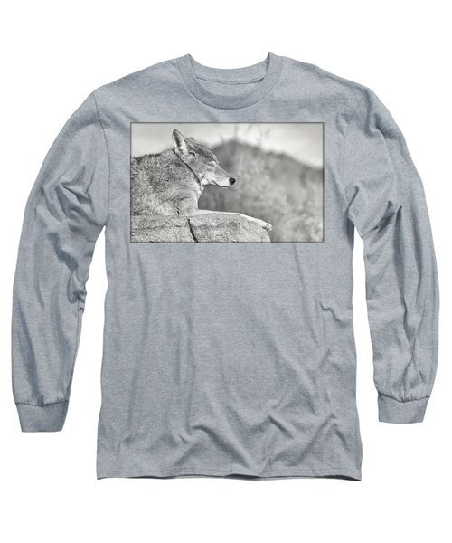Sleepy Coyote Long Sleeve T-Shirt