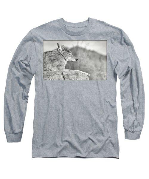 Sleepy Coyote Long Sleeve T-Shirt