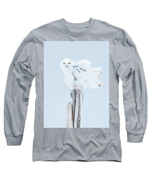Snowy Owl Feather Shake Long Sleeve T-Shirt