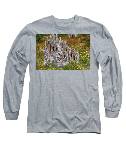 Stumps Of Trees Shattered In The 1980 Eruption Long Sleeve T-Shirt