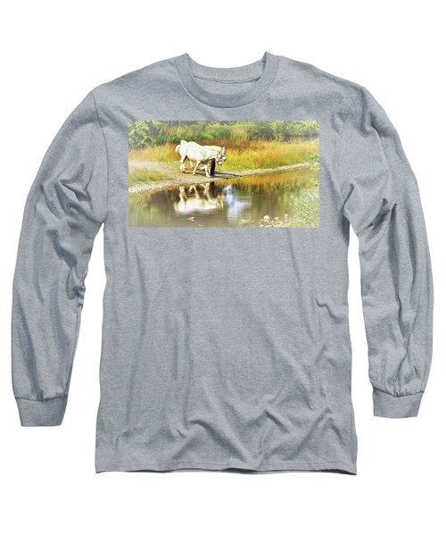 Leading The Horses To Water Long Sleeve T-Shirt