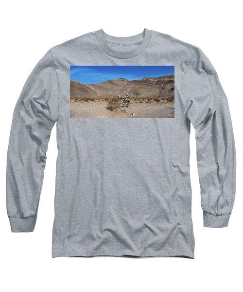 Teakettle Junction I Long Sleeve T-Shirt