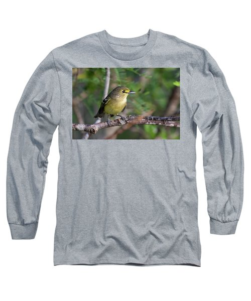 Thick-billed Vireo Long Sleeve T-Shirt