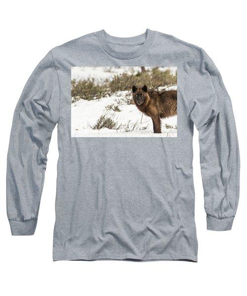W12 Long Sleeve T-Shirt