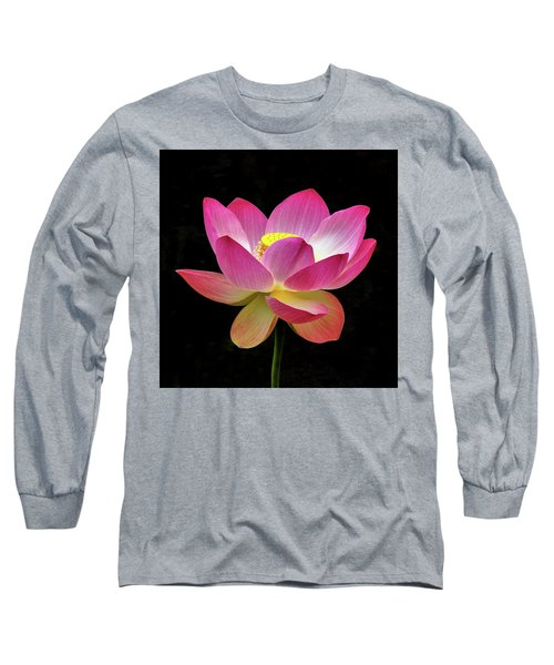 Water Lily In The Light Long Sleeve T-Shirt