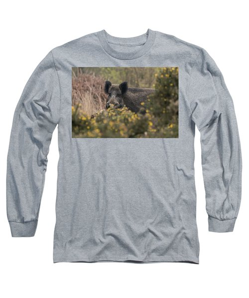 Wild Boar Sow Long Sleeve T-Shirt