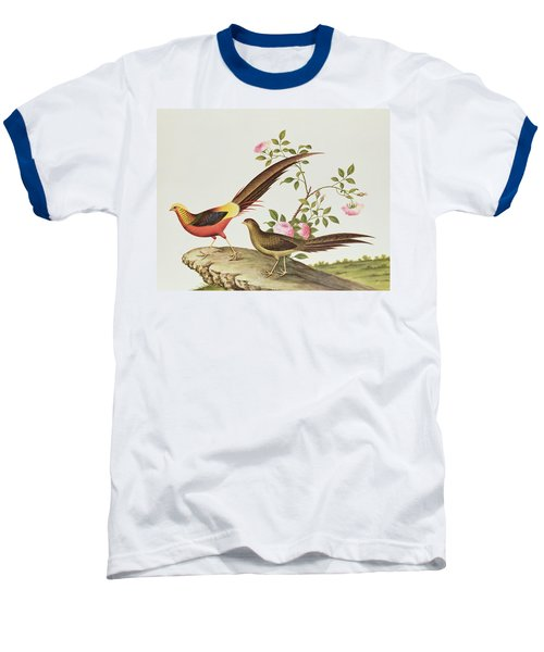 A Golden Pheasant Baseball T-Shirt by Chinese School
