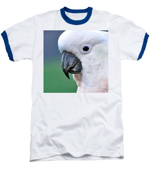 Australian Birds - Cockatoo Up Close Baseball T-Shirt by Kaye Menner