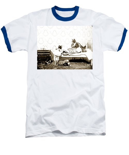 Baseball T-Shirt featuring the photograph Bed Time For Kitty Cats Histrica Photo Circa 1900 by California Views Mr Pat Hathaway Archives