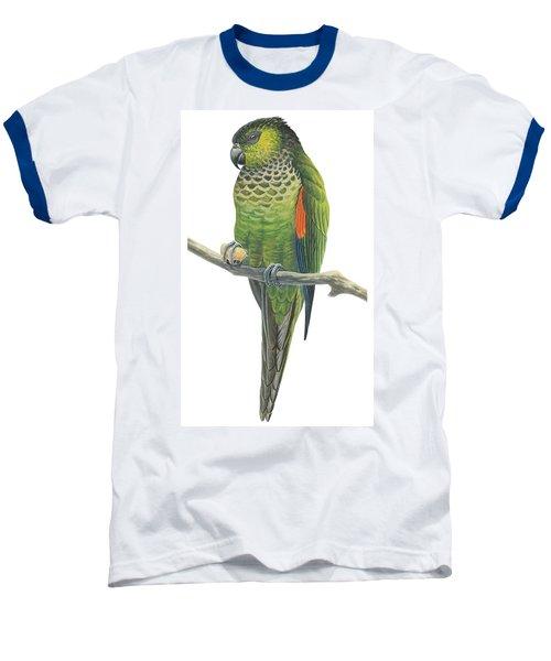 Rock Parakeet Baseball T-Shirt by Anonymous