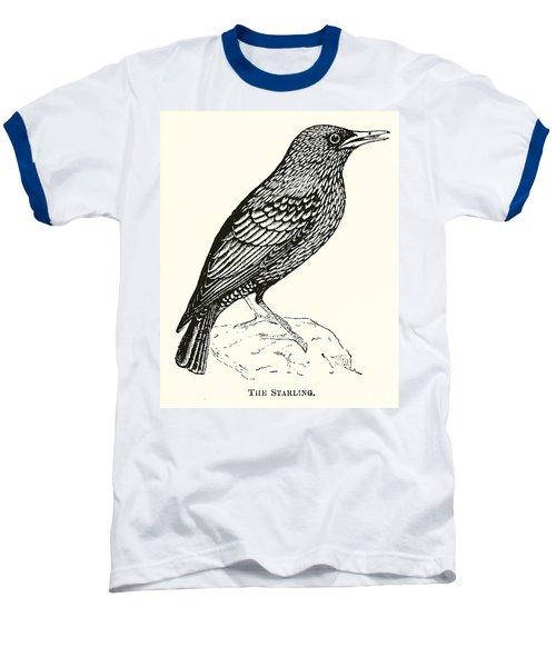 The Starling Baseball T-Shirt by English School