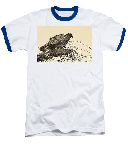 Turkey Vulture V2 Baseball T-Shirt by Douglas Barnard