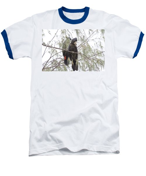 Red Tailed Black Cockatoos Baseball T-Shirt by Douglas Barnard