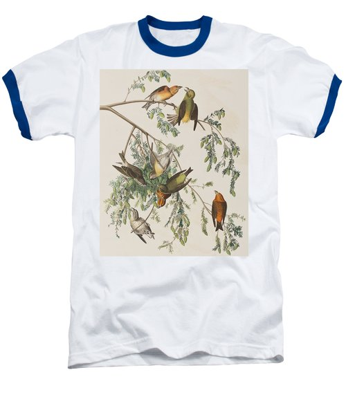 American Crossbill Baseball T-Shirt by John James Audubon