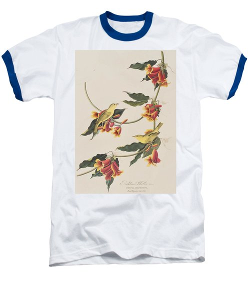 Rathbone Warbler Baseball T-Shirt by John James Audubon