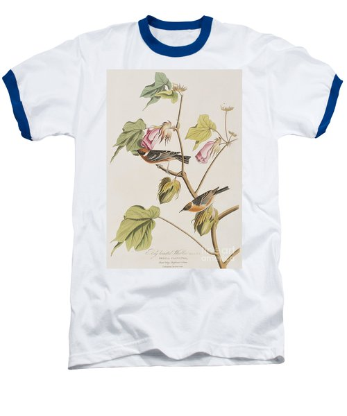Bay Breasted Warbler Baseball T-Shirt by John James Audubon