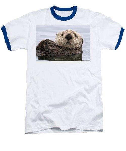 Sea Otter Elkhorn Slough Monterey Bay Baseball T-Shirt by Sebastian Kennerknecht