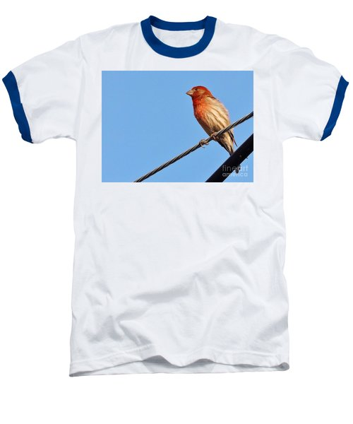 American Crossbill On Wire     Spring   Indiana   Baseball T-Shirt by Rory Cubel