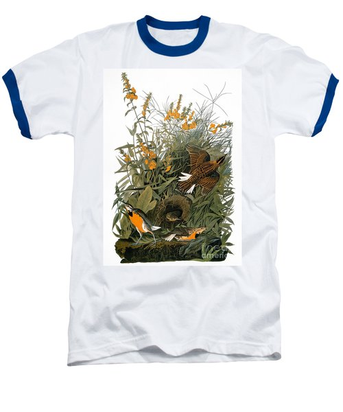 Audubon: Meadowlark Baseball T-Shirt by Granger