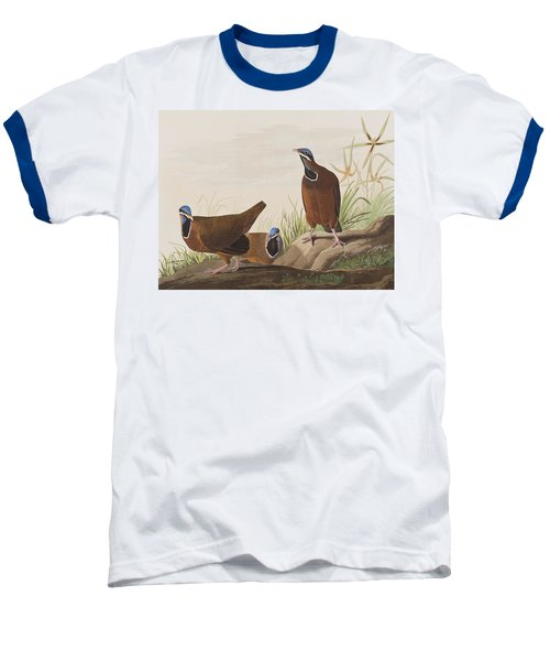 Blue Headed Pigeon Baseball T-Shirt by John James Audubon