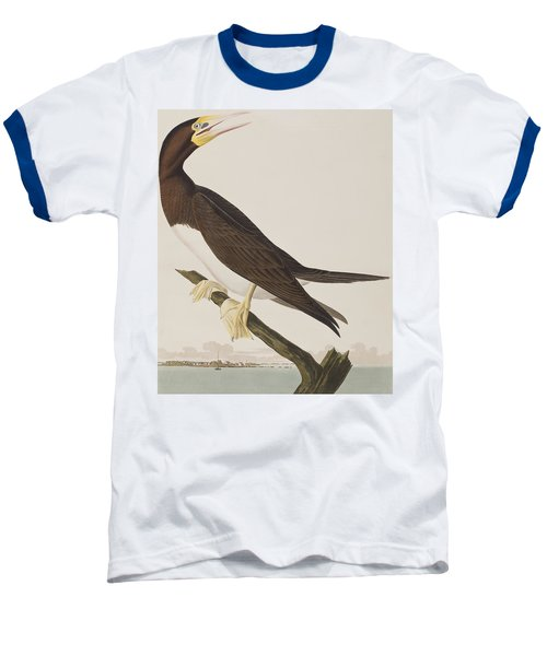 Booby Gannet   Baseball T-Shirt by John James Audubon