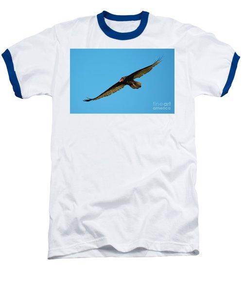 Buzzard Circling Baseball T-Shirt by Mike Dawson