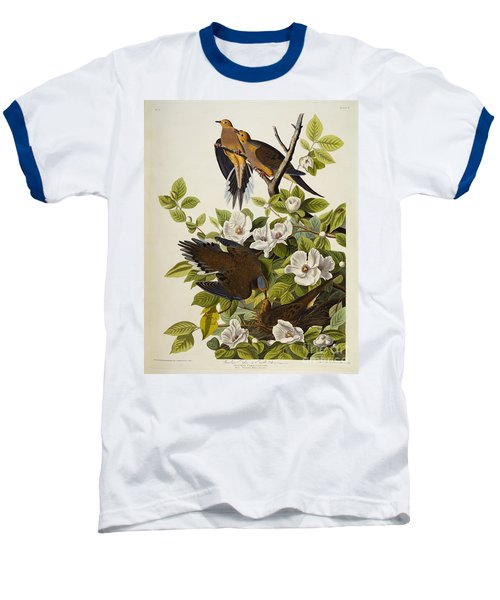 Carolina Turtledove Baseball T-Shirt by John James Audubon