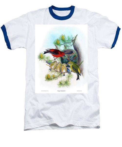 Common Crossbill Antique Bird Print John Gould Hc Richter Birds Of Great Britain  Baseball T-Shirt by Orchard Arts