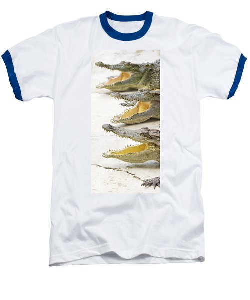 Crocodile Choir Baseball T-Shirt by Jorgo Photography - Wall Art Gallery
