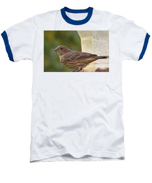 Crossbill Female Portrait      September    Indiana Baseball T-Shirt by Rory Cubel