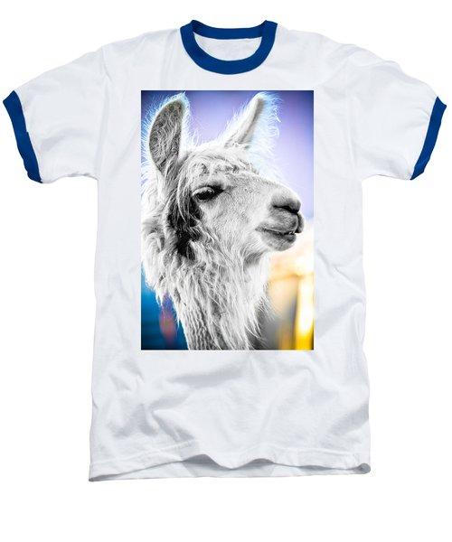 Dirtbag Llama Baseball T-Shirt by TC Morgan
